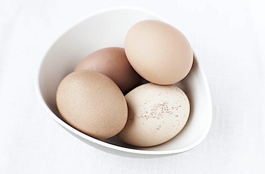 eggs10 of 28