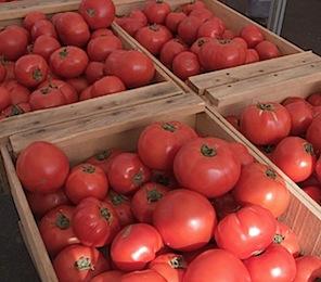 farmersmarketjune3 of 16