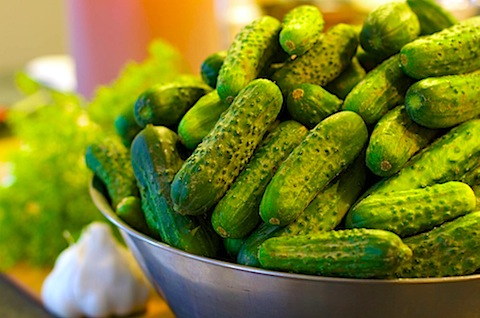 Dill pickles 25