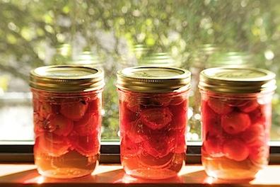 pickledcrabapples19 of 22