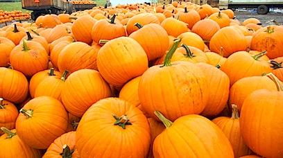 a mix - - - Oct- 08 10