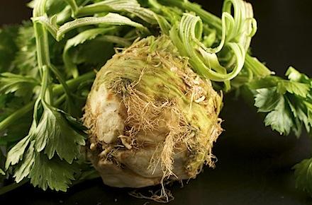 celeryroot1 of 11