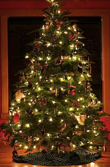 christmas083 of 3