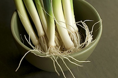 leeks29 of 29