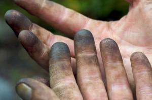 gardeners-hands