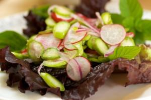 asparagus-radish-salad-3