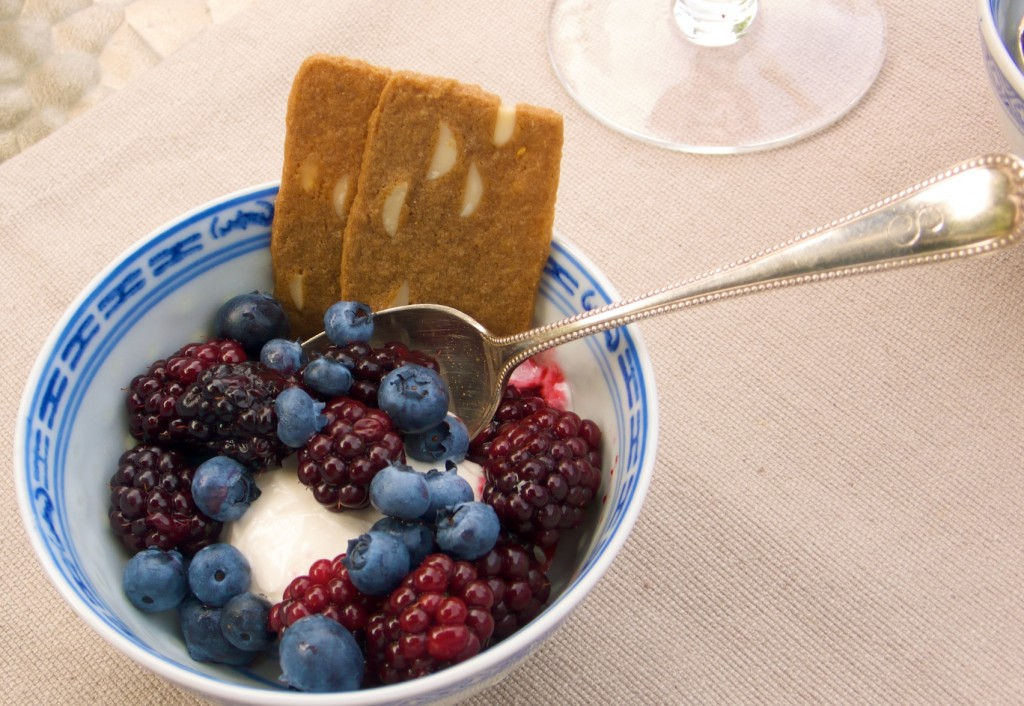 blueberries-greek-yogurt