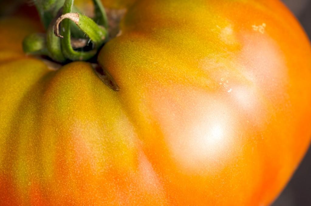 tomato-apples-1