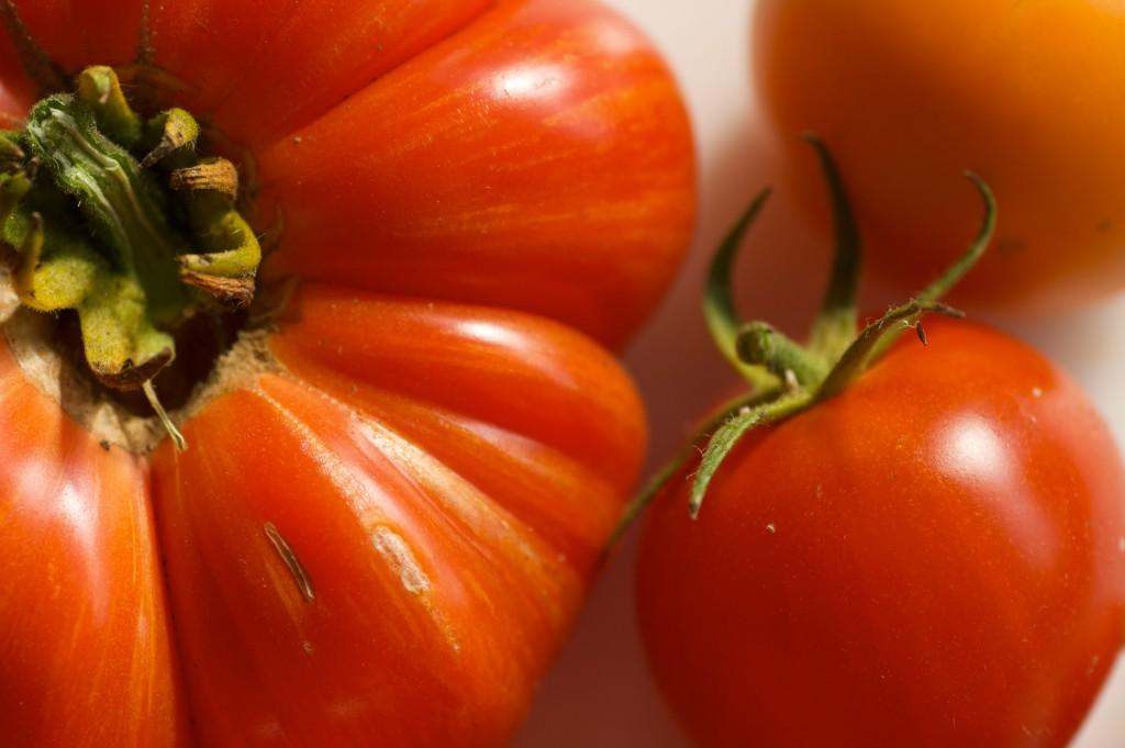 tomatoes-2-11