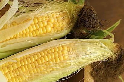 cornchilisoup1 of 19