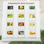 calendar36 of 45