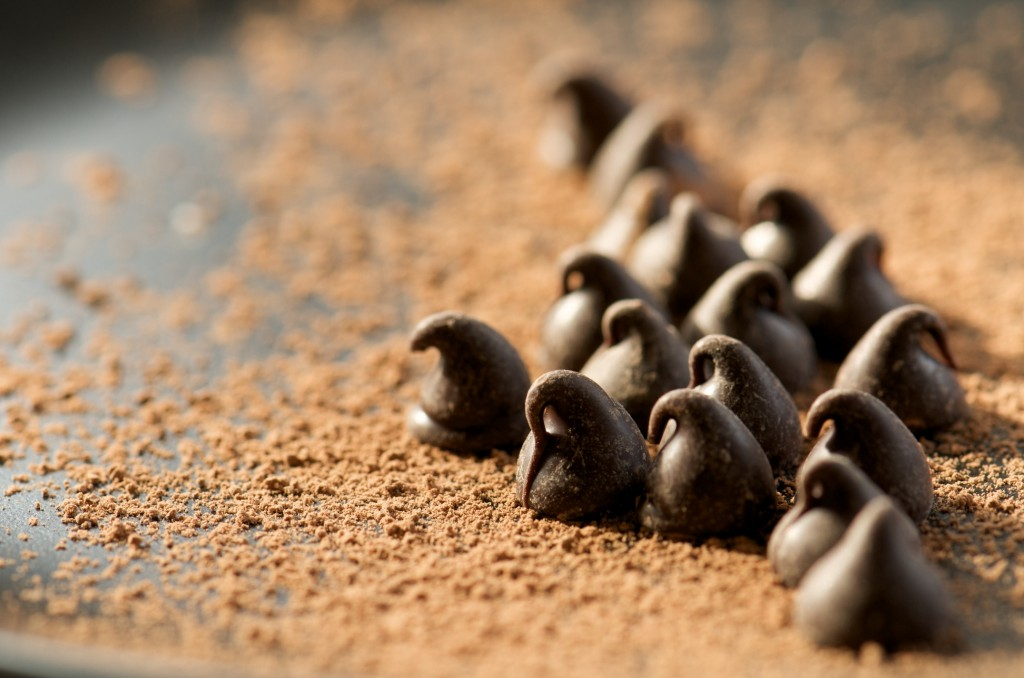 Chocolate Chips on Cocoa Powder