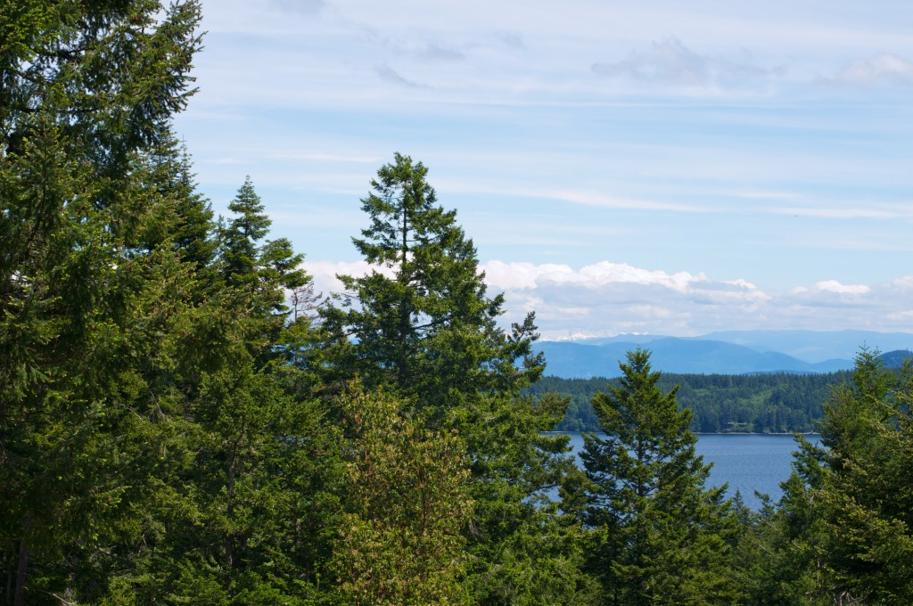 Orcas Island View