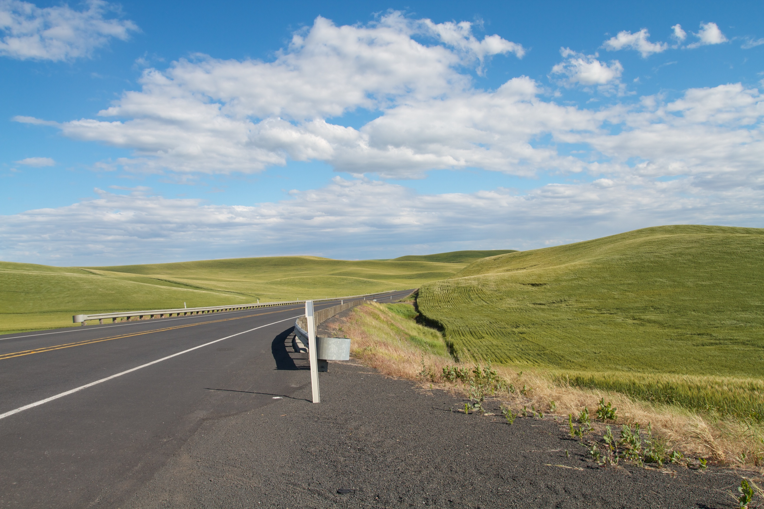 On the road, the Palouse, WA