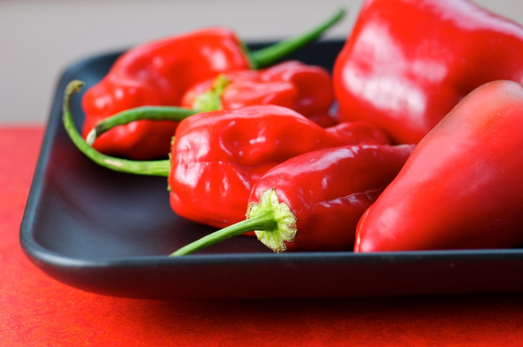 Red Hot Padrone Peppers