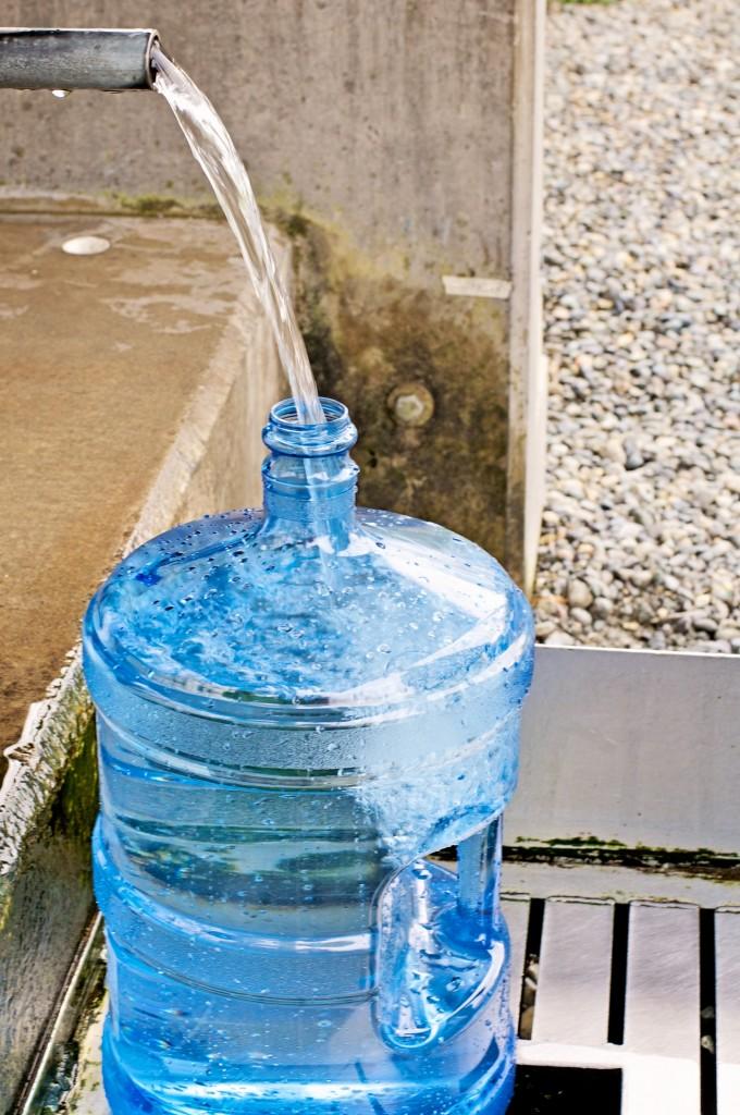 Lynnwood Artesian Well