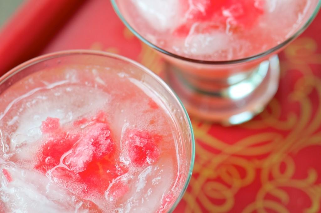 Rhubarb Granita Gin & Tonic