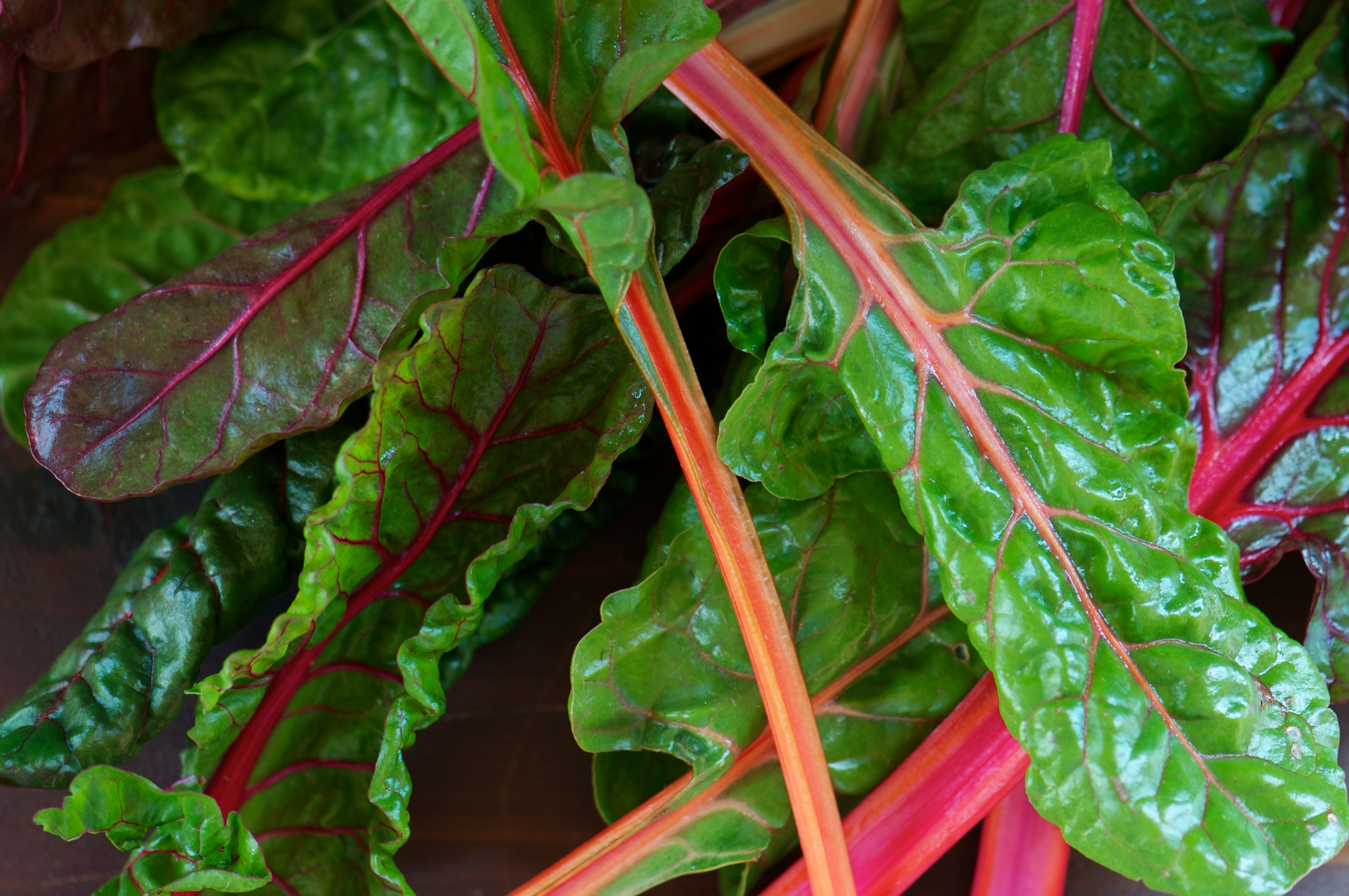 Pot of Greens: Rainbow Swiss Chard | Mixed Greens Blog
