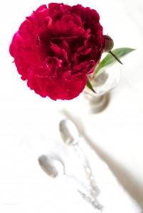 Rhubarb Pavlova 2
