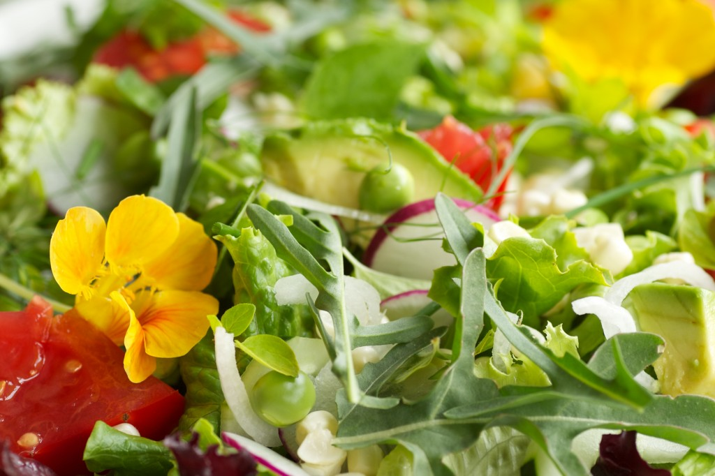 Late Summer Salads Cookbook from Mixed Greens Blog   Mixed ...