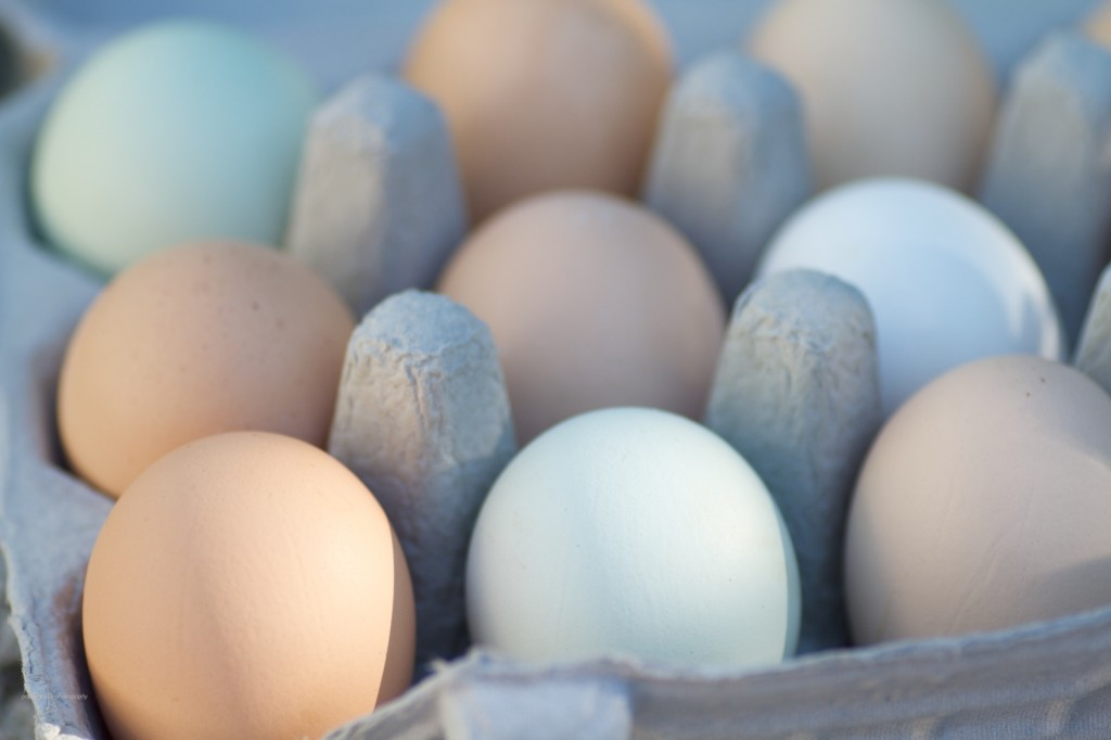 Fresh eggs, Whistling Train Farms. Put An Egg On It!