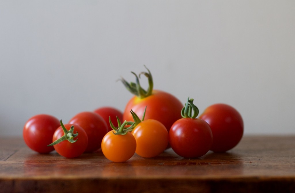 A little family of tomatoes fresh from the garden, almost too cute to eat, but not quite.
